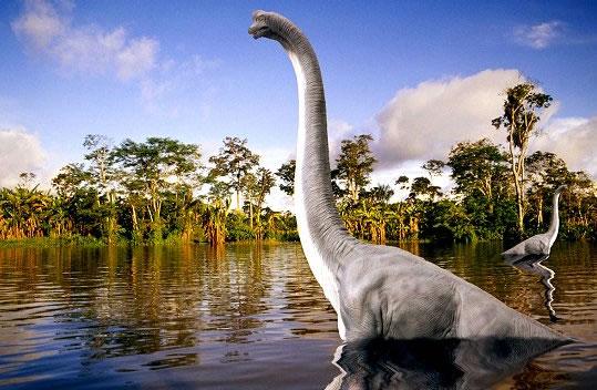 """Ученые США отправляются в джунгли реки Конго искать """"пожирателя слонов"""""""